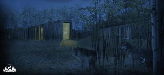 Hameau-des-Loups-visuel-nuit.jpg