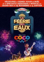 COCO-ET-LA-FEERIE-DES-EAUX_3670474782394571225.jpg