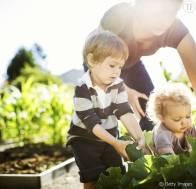 375211-des-petits-jardiniers-en-herbe-622x600-2