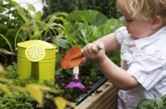 Un-petit-jardinier-300x199